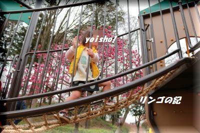 春の行楽②