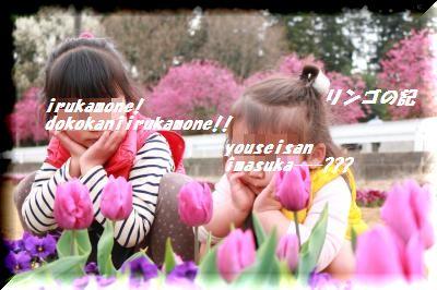 春の行楽③