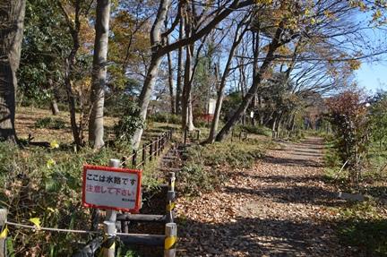2014-12-13_39.jpg