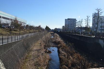 2015-01-10_84.jpg