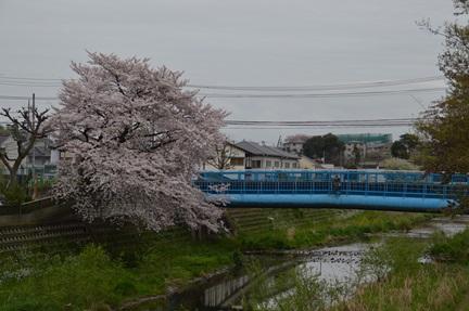 2015-04-04_168.jpg