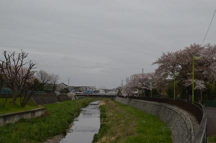 2015-04-04_172.jpg