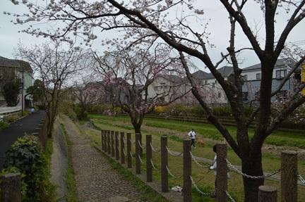 2015-04-04_28.jpg