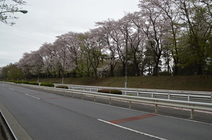 2015-04-04_59.jpg