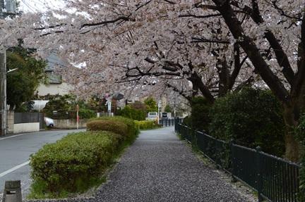 2015-04-04_7.jpg