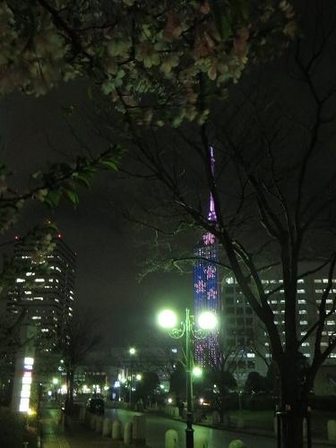 夜の散歩♪