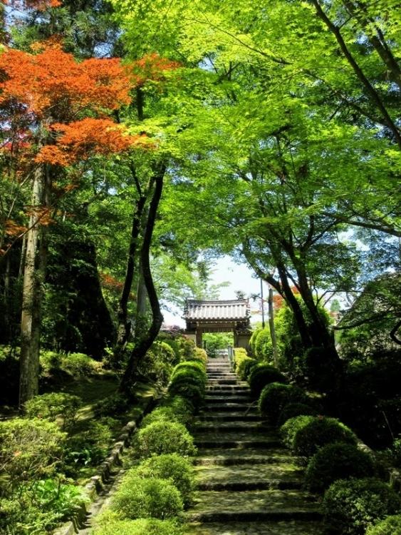 霊山寺2150522