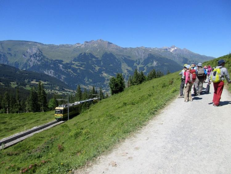 スイス20150630