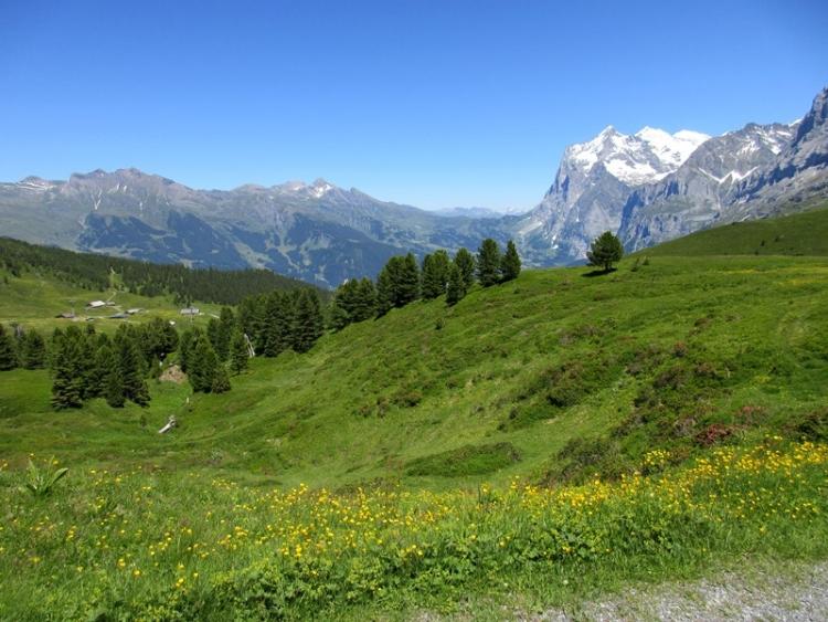 スイス21150630