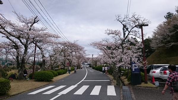 150404hirakatac1.jpg