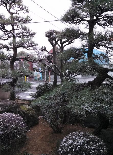 kannonji20150101.jpg