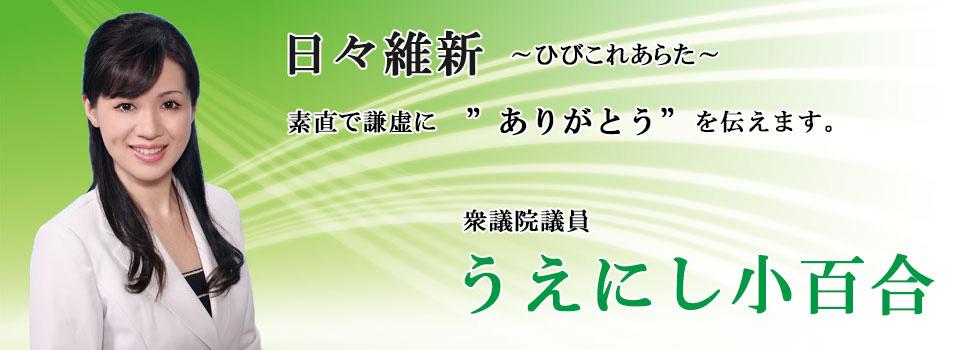wpid-1427927425-0012-001.jpg