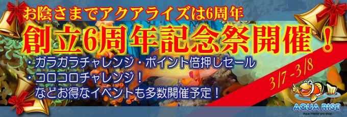 201503opensale_banner.jpg
