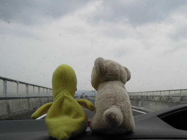 雨だクワ!