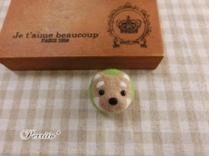 3月柴犬ボール1
