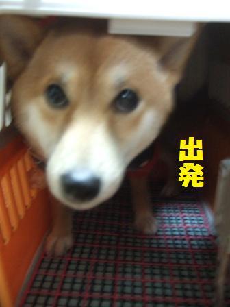 blog8363.jpg