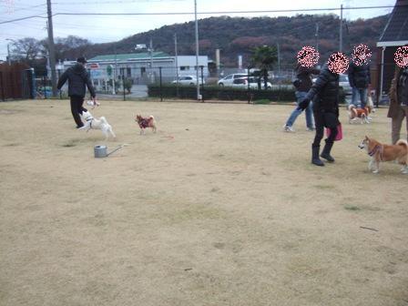 blog8414.jpg
