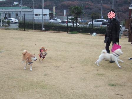 blog8415.jpg
