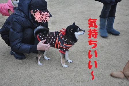 blog8433.jpg