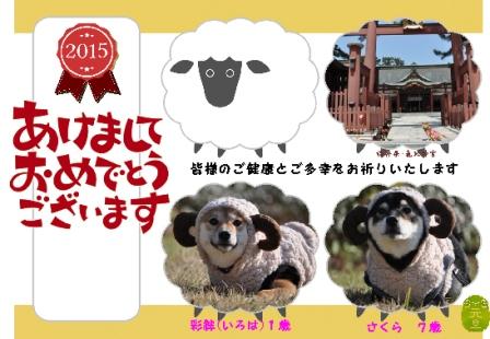 blog8494.jpg