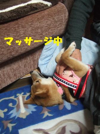 blog8524.jpg