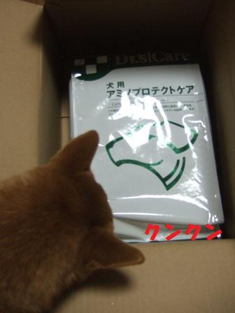 blog8707.jpg