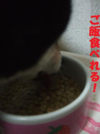 blog8836.jpg