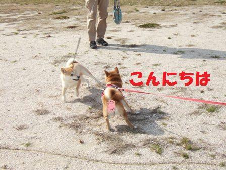 blog8863.jpg