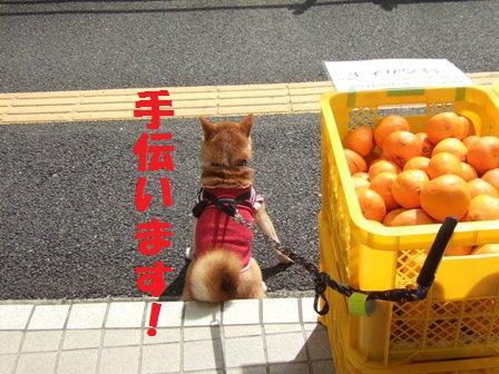 blog8900.jpg