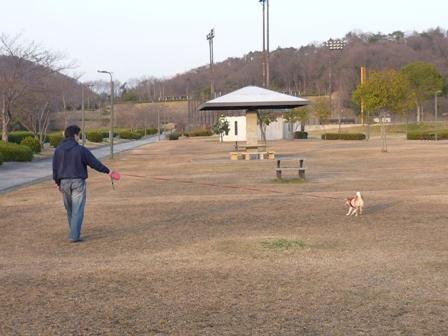 blog8938.jpg