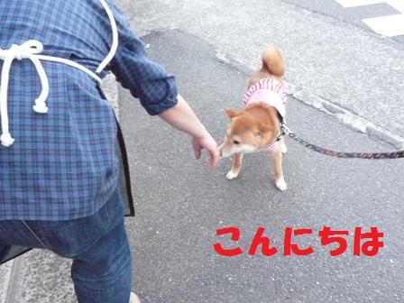 blog8945.jpg