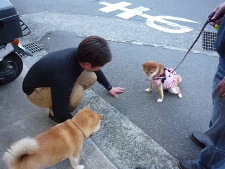 blog8946.jpg