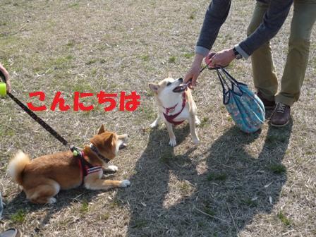 blog8970.jpg