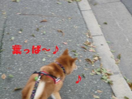 blog9004.jpg
