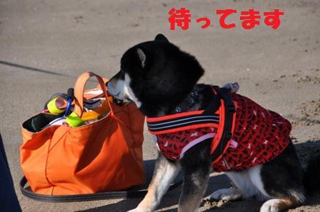 blog9079.jpg