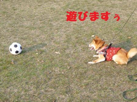 blog9146.jpg