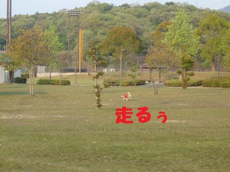 blog9154.jpg