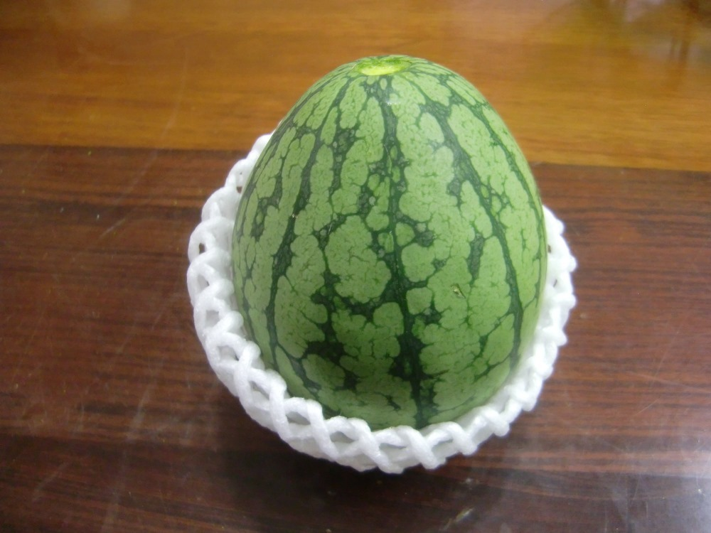 150719watermelon2