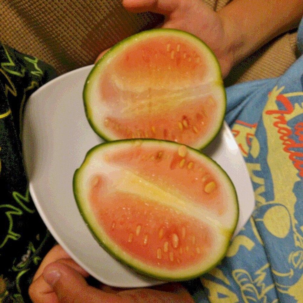 150720watermelon