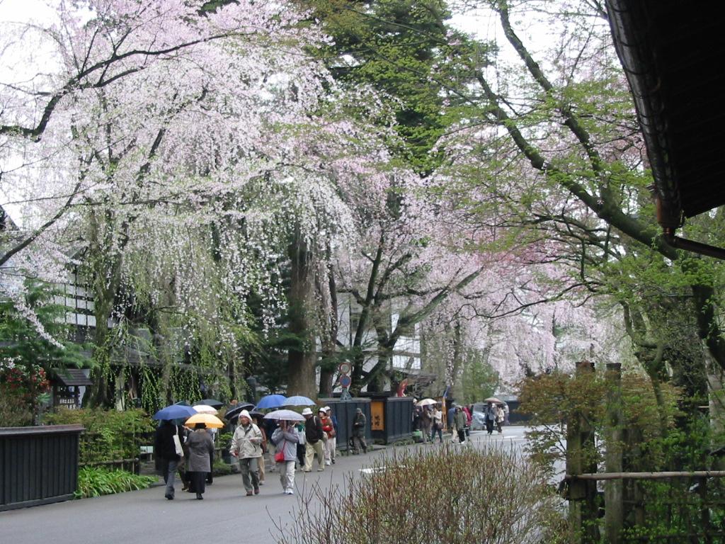 季節外れの冬型で小雨が降ってきました。