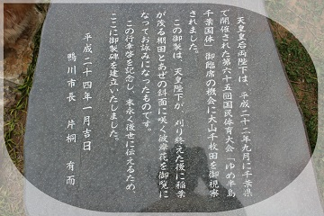 H27050406大山千枚田