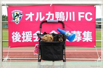 H27052502オルカ鴨川FC