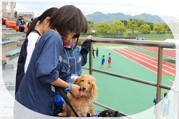 H27052503オルカ鴨川FC