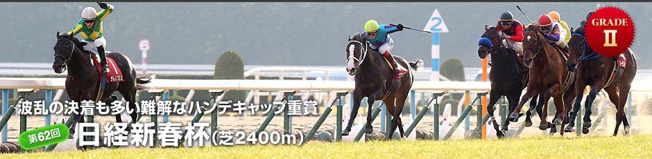 第62回 日経新春杯