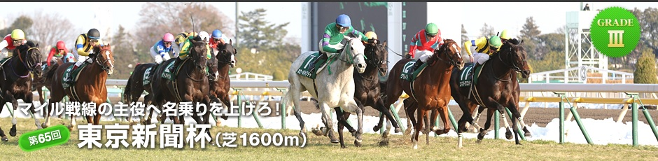 第65回 東京新聞杯01