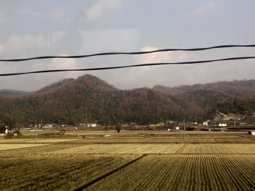 17広島は紅葉