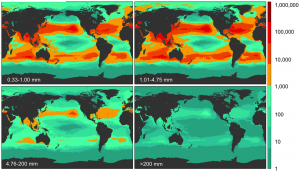 Model results for global count density in four size classes