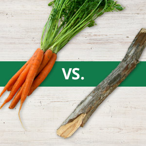 carrot or stick
