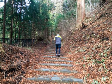 滝尾神社参道_150103
