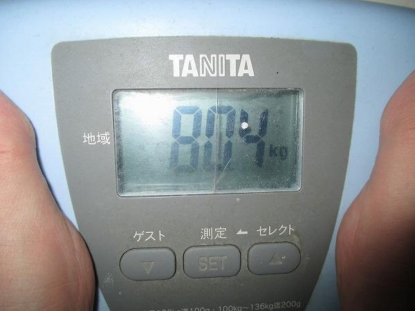 2015-1-8-ハチ-0006